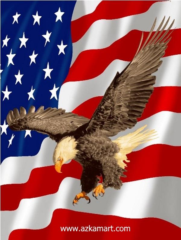 jual beli selimut bulu halus lembut rosanna gambar amerika