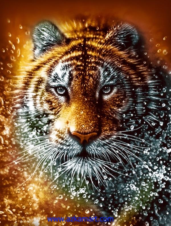 jual beli selimut bulu halus lembut rosanna gambar tiger