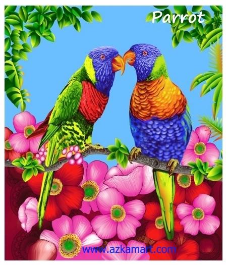 jual beli selimut rosanna king sutra panel gambar parrot