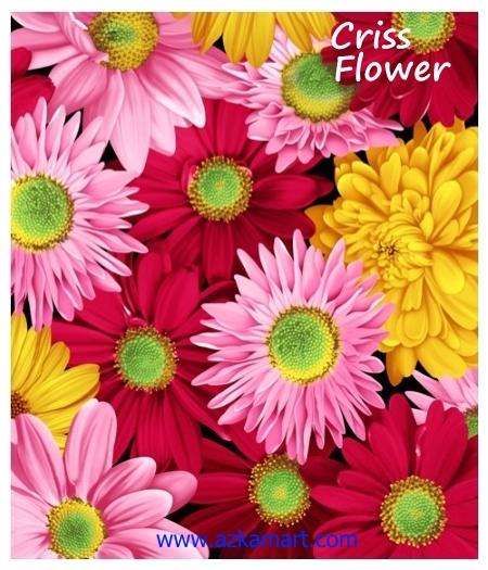 jual beli selimut rosanna king sutra panel gambar criss flower